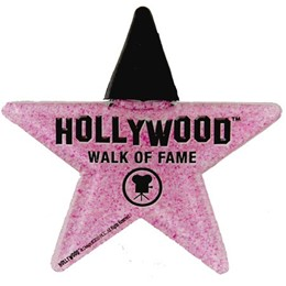 Hollywood Walk of Fame II Acrylic Star Clip Magnet