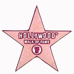 Hollywood Walk of Fame Starshape Pink PVC Magnet